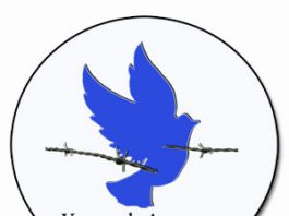 Venezuela Awareness Foundation LOGO
